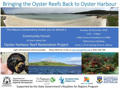 Oyster Harbour Reef Restoration Project image