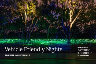 Vehicle Friendly Nights at Field of Light: Avenue of Honour image