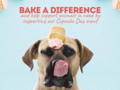 RSPCA Cupcake Day image