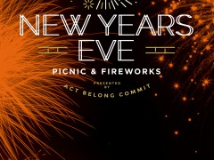 New Year's Eve Picnic & Fireworks image