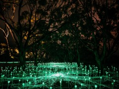 Glowing artwork lures over 18,000 visitors to Albany's Mount Clarence since launch image