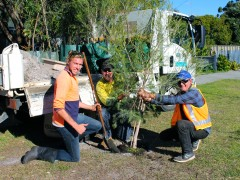 Lockyer receives a leafy makeover image