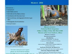 South Coast Festival of Birds 2018 image