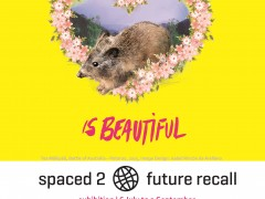 Spaced 2: Future Recall image