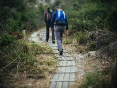 Funding to map region's top walks and paddling locations image