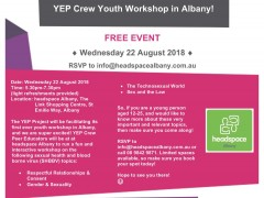 YEP Crew Youth Workshop in Albany  image