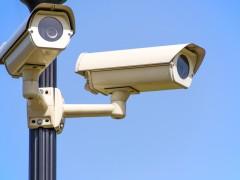 Safer Albany survey for residents  image