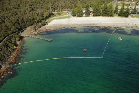 Swimming Enclosure Trial Update image
