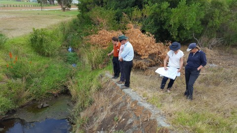 Drains to be transformed into wetland image