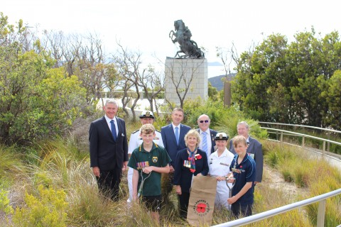 Albany soil to grow memorial poppies image