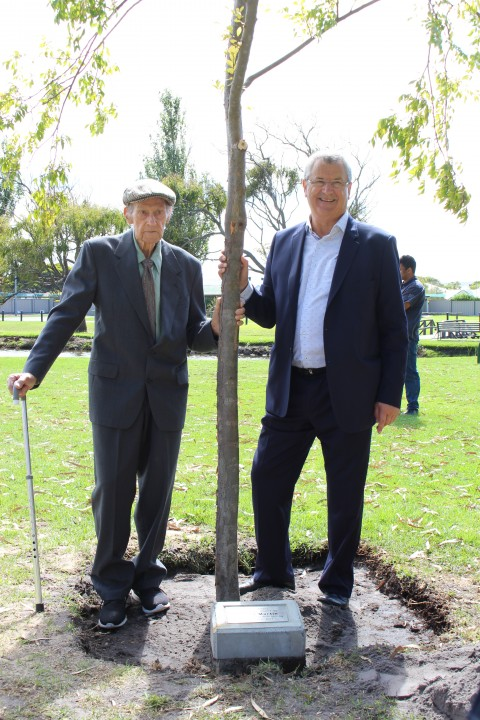 Ceremonial tree planting honours war veteran image